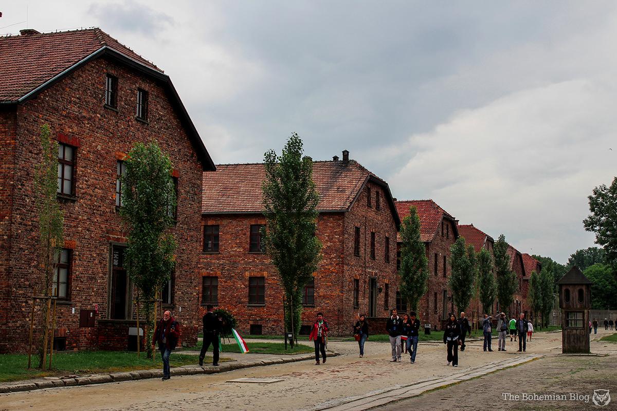 Krakkó - Wieliczka - Zakopane (Auschwitz - Birkenau)***